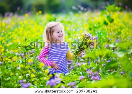 Child picking wild flowers in field. Kids play in a meadow and pick flower bouquet for mother on summer day. Children playing on a farm. Toddler girl outdoors in spring. Family vacation in the country