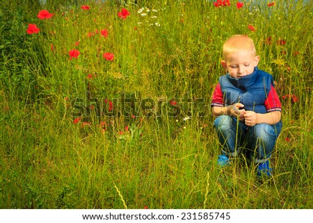 Child playing on green meadow examining field flowers. Environmental awareness education. - stock photo