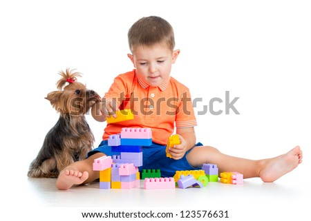 Child playing with building blocks toys. York terrier dog sitting near boy.