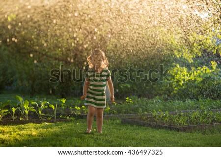 Child playing with garden sprinkler. Kids gardening. Summer outdoor water fun. Children play with gardening hose watering flowers. - stock photo