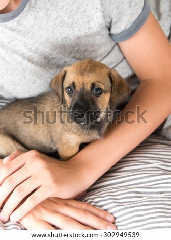 Child Protecting Brown Puppy with Floppy Ears - stock photo
