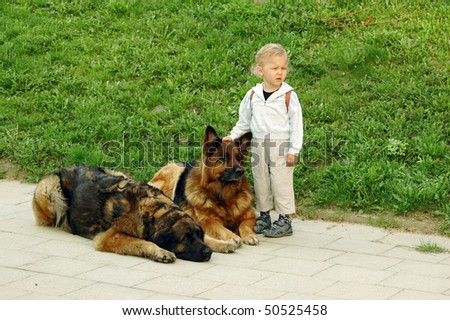 Child put his hand on the dog's head.
