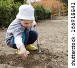 Child raking ground and planting seeds in the garden in spring.  - stock photo