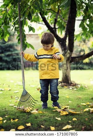 child Raking Leaves  - stock photo