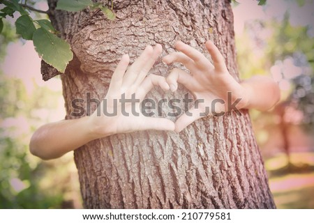 Child's hands making a heart shape on a tree trunk. Instagram effect - stock photo