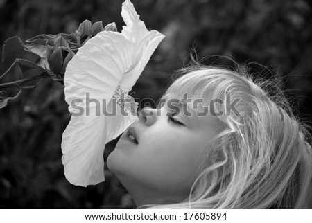 child smelling a hibiscus - stock photo