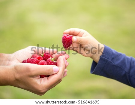 child taking raspberry from mother's hands