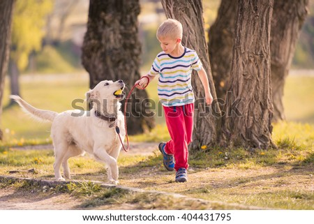 Child Training Labrador Dog Golden Retriever in Park - stock photo