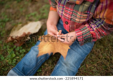 Child with fallen leaves - stock photo