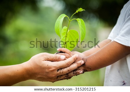 Child with parents hand holding young tree in soil together for prepare plant on ground,save world concept - stock photo