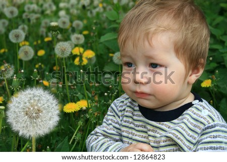 Child with the bouquet of dandelions in the hands