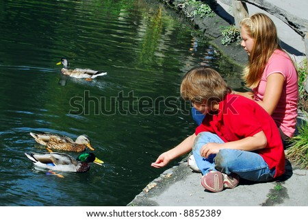 Children feeding ducks at the pond in a park - stock photo