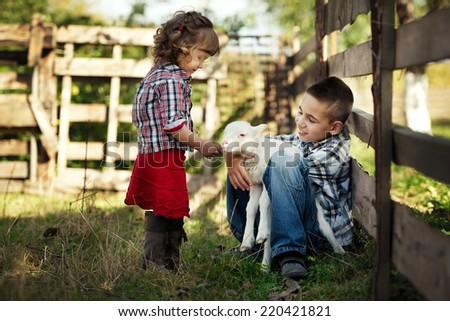 Children feeding little lamb in the garden - stock photo