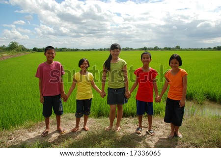 Children hanging in the rice field - stock photo