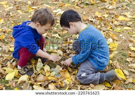 Children playing in autumn leaves, searching ground for chestnuts.