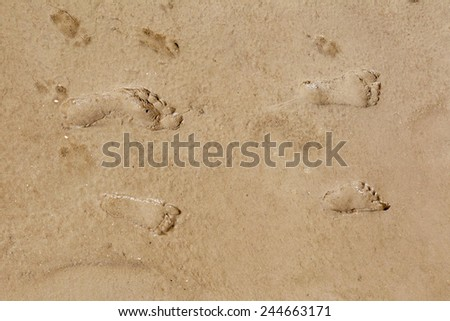 children's and adult human footprints on the wet sand at the beach - stock photo