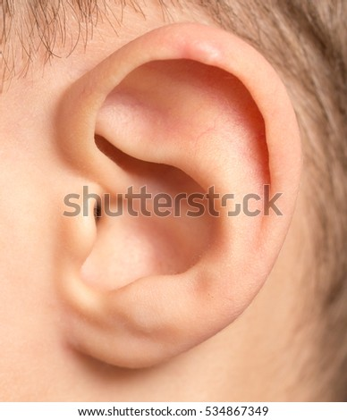 children's ear. macro