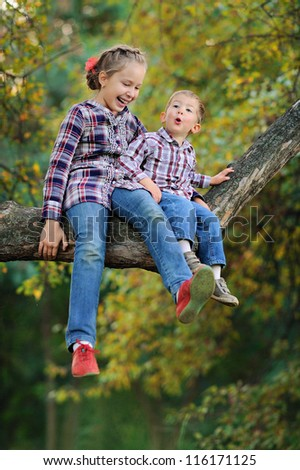 children sit on a high tree. Sunny summer day