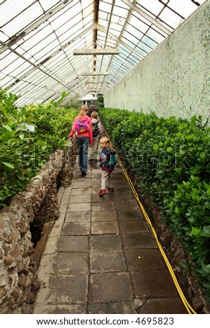 Children with rucksacks visiting big green greenhouse