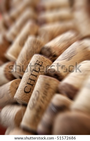 Chile cork plug in a row of plugs - stock photo