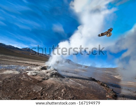 Chile. Valley of Geysers in the Atacama Desert - stock photo