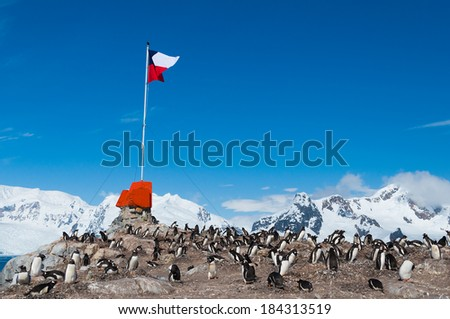 Chilean base Antarctica showing flag and penguins - stock photo