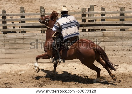 Chilean rodeo - traditional sport of horsemen - stock photo