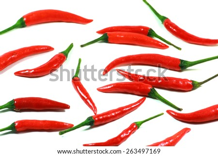 Chili for isolate - stock photo
