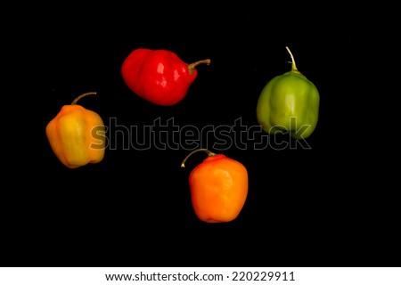 Chilli pepper - stock photo
