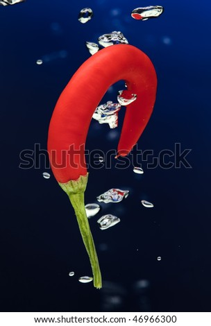 Chilli pepper falling in water on blue with air bubbles - stock photo