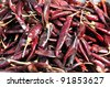 Chillies for sale at the Mexican food market in mexico city. - stock photo