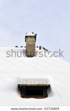 Chimney on the roof covered with snow and pigeons around it.