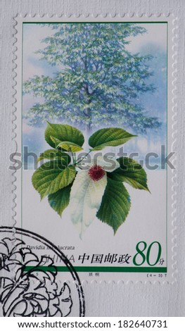 CHINA - CIRCA 2006:A stamp printed in China shows image of China 2006-5 Plant of Relic Species Stamps - Tree,circa 2006 - stock photo