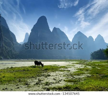 China Guilin landscape raft - stock photo