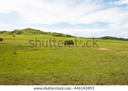 China Inner Mongolia natural grassland - stock photo