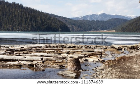 china travel lake with ice and flood wood, ice river background, western beautiful landscape in wide range at Pudacuo national park, Shangrila or Shangri La - stock photo
