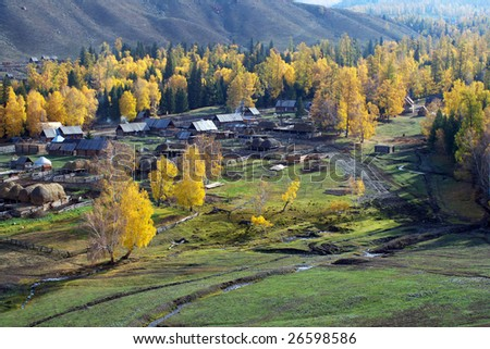 China/xinjiang hiking: Fall colors of Baihaba village