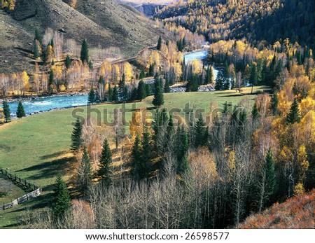 China/xinjiang hiking: Fall colors of Kanas riverside - Jia Dengyu - stock photo