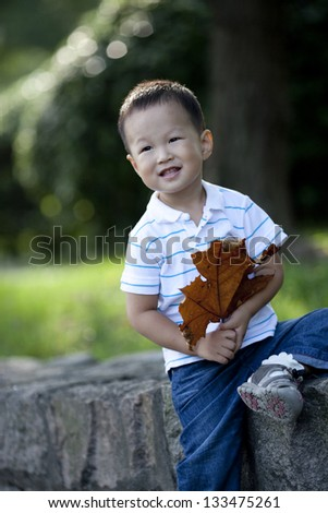 Chinese boy holding yellow plane leaf in the park