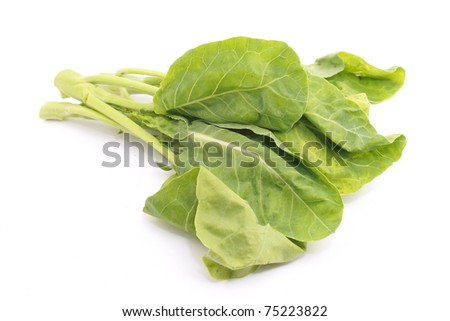 Chinese Brocolli isolated on white