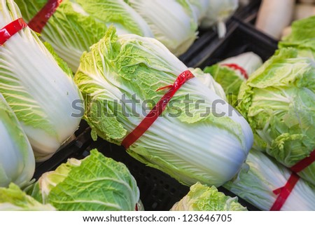 chinese cabbage sold in the super market - stock photo