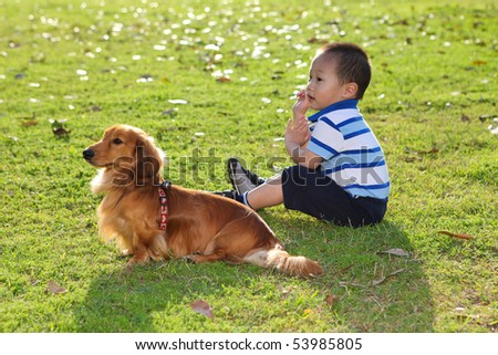 chinese child with a dog in the park watching - stock photo