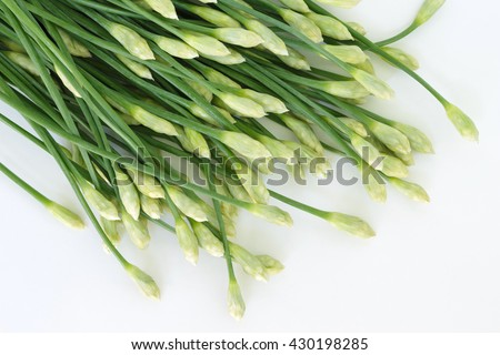 chinese chive flowering onions stalk vegetable food nature background - stock photo