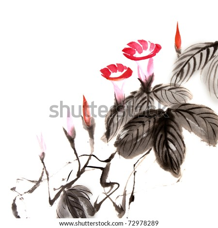 Chinese flower painting of morning glory on white background. - stock photo