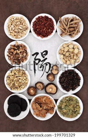 Chinese herbal medicine with calligraphy script on rice paper with yang herb selection. Translation reads as yang. - stock photo
