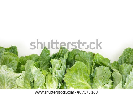 chinese kale frame, border top view on white background - stock photo