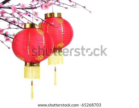 Chinese Lantern on Plum Branch,Isolated on White. - stock photo