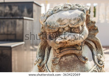 chinese lion sculpture portrait
