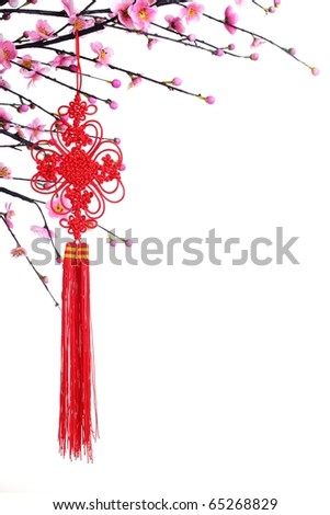 Chinese Lucky Knot on Plum Branch,Isolated on White. - stock photo