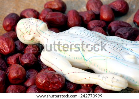 Chinese Medicine - stock photo